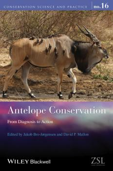 Antelope Conservation. From Diagnosis to Action