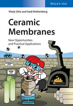 Ceramic Membranes. New Opportunities and Practical Applications