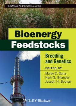 Bioenergy Feedstocks. Breeding and Genetics